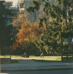[Giardini pubblici]