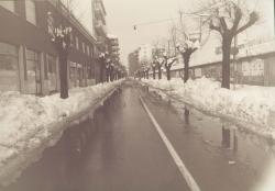 Viale Delle Rimembranze dopo un'eccezionale nevicata