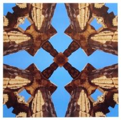 Tempio di Escher