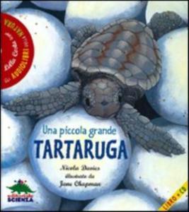 Una piccola grande tartaruga