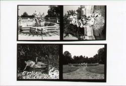 Fontana di Galatea. Ratto di Proserpina
