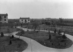 Villa Dubini: giardino